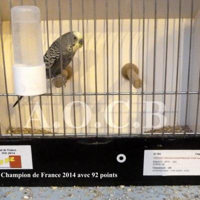 Championnat FFO 2014 (champion avec 92 points)