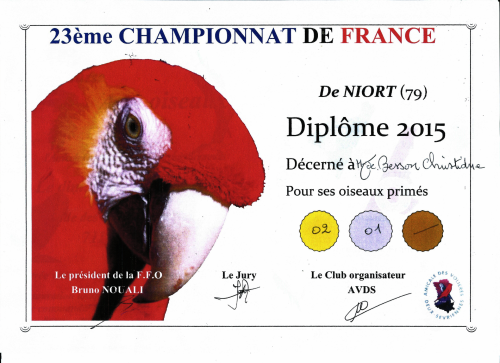 Diplome 2015 besson